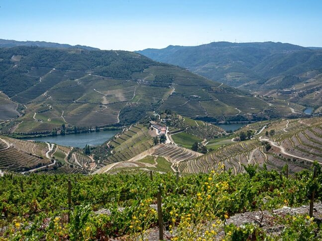 Quinta no Douro - WOW