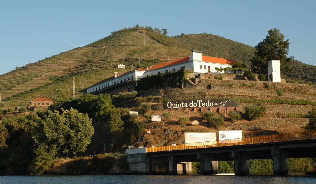 Here, you will find one of the most personalized visits to the Douro.